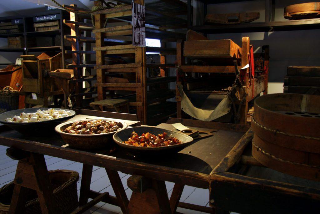 Museum De Zwarte Tulp 17-01-101