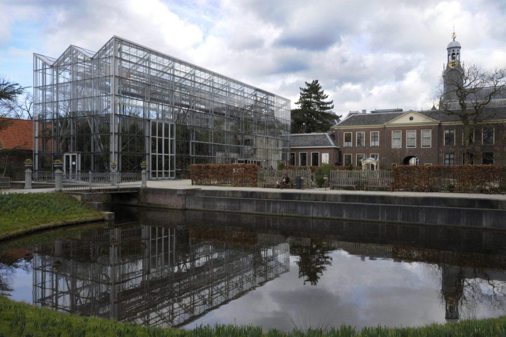 Vijvertuin Hortus Botanicus Leiden